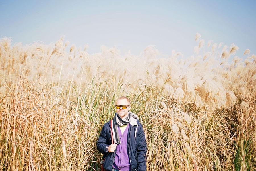 fields-of-gold-26