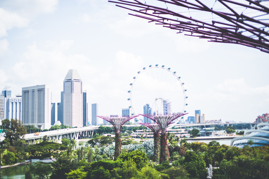 Singapore-150324-136