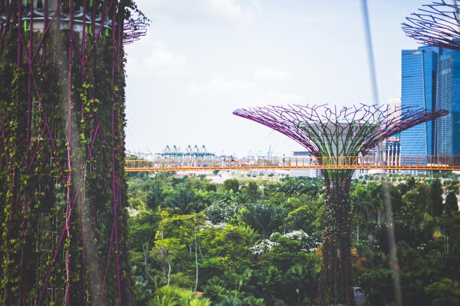 Singapore-150324-132