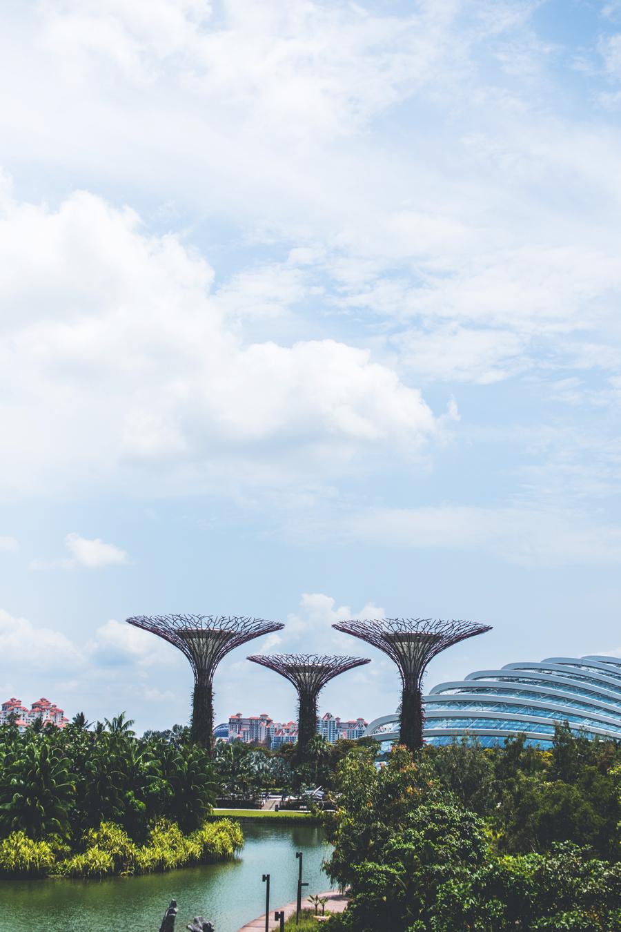 Singapore-150324-189