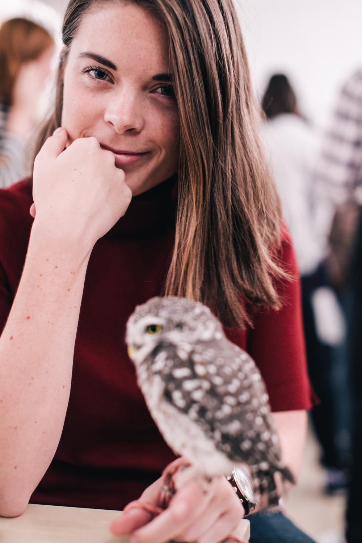 owls-151119-20