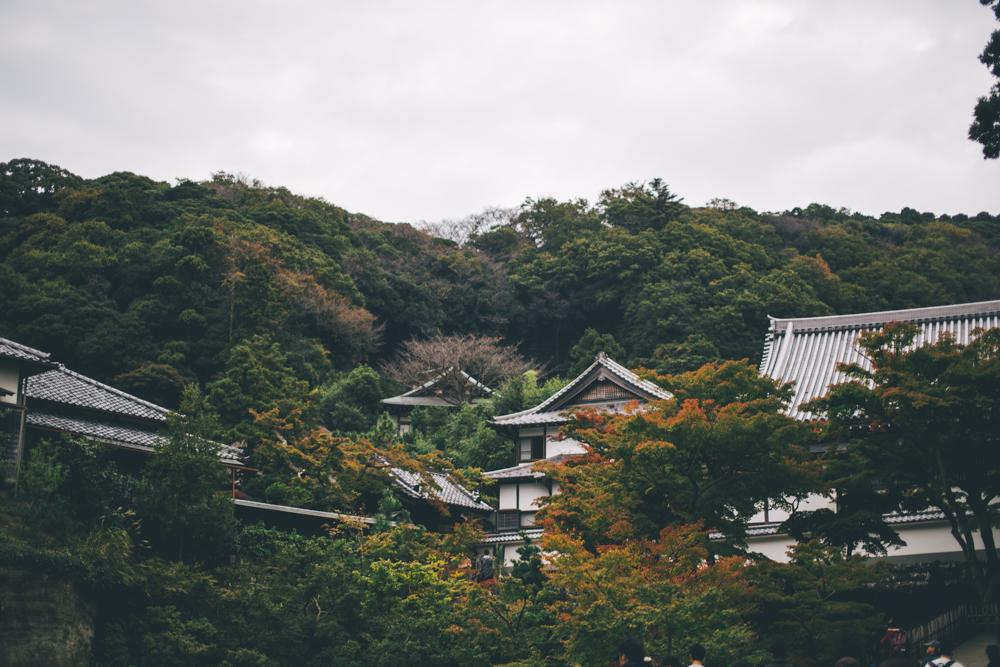 tokyo-151121-35