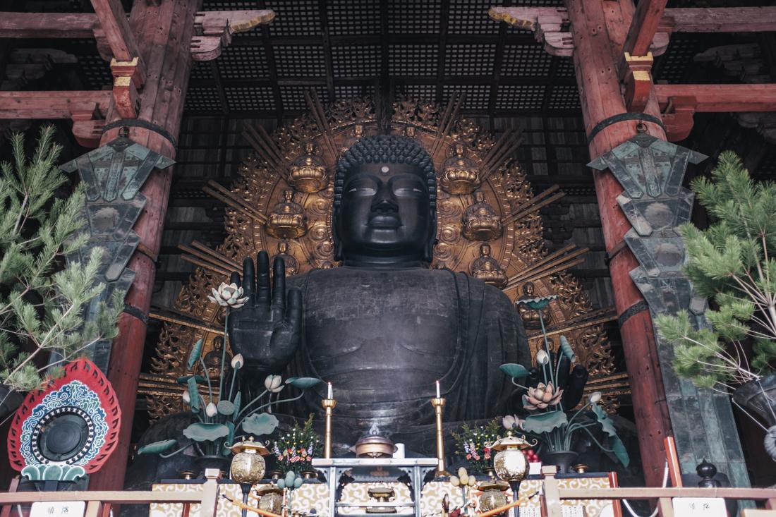 Nara-Park-160306-64