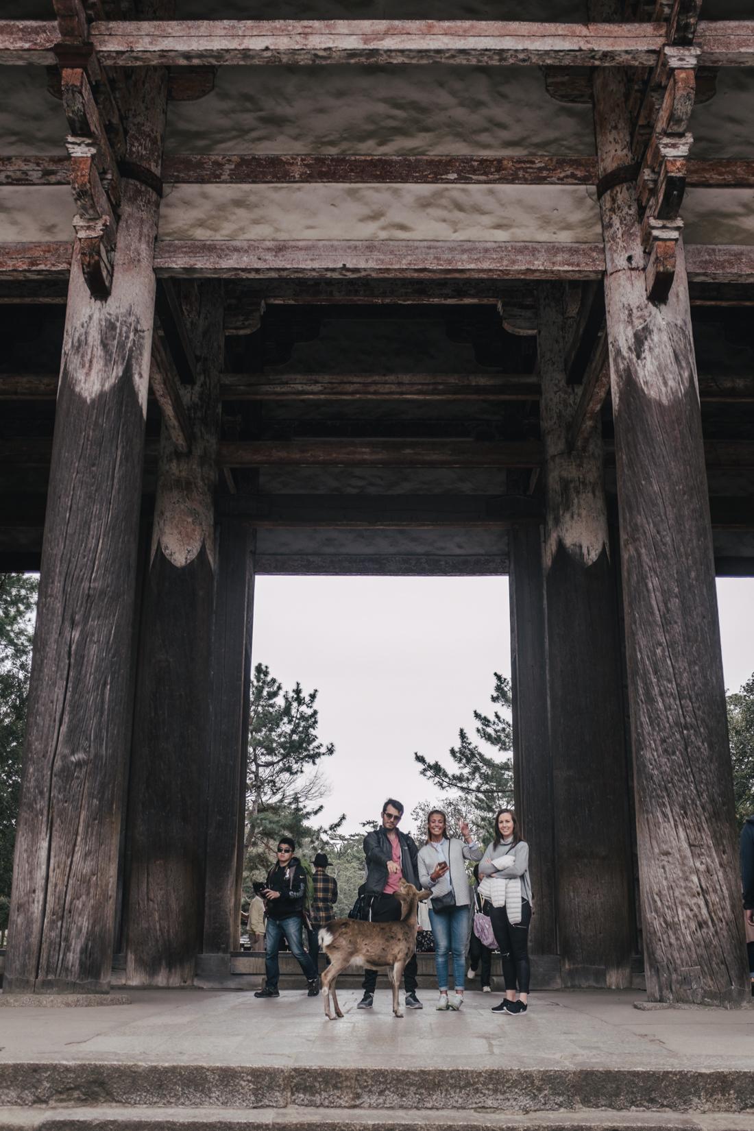 Nara-Park-160306-77